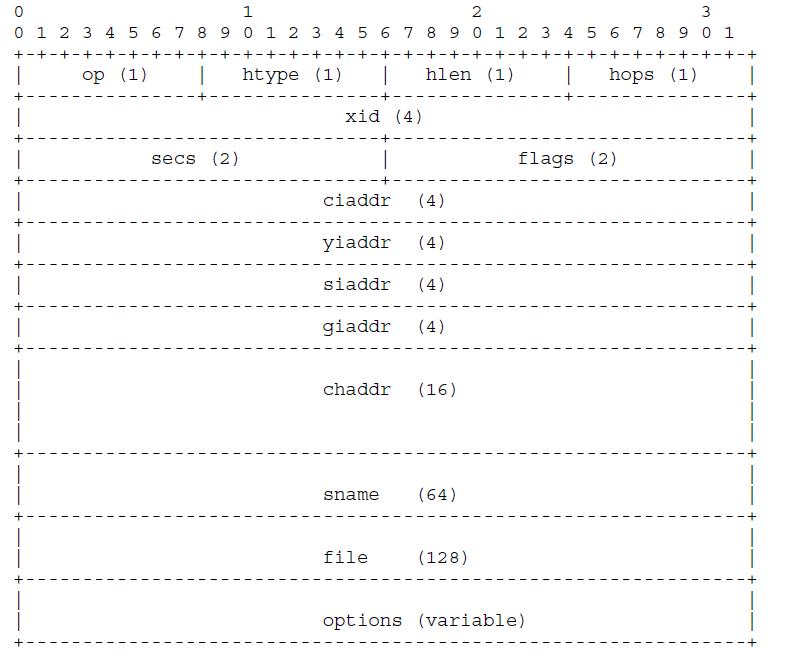 DHCP协议详解